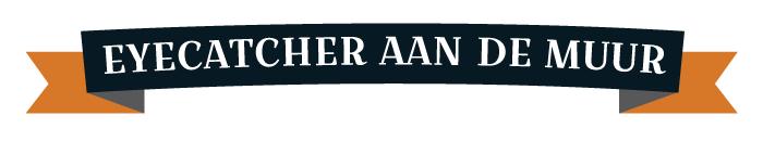 wp-eyecatcher-banner-700x130px